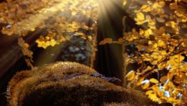 Podzimní balíček příslušenství – aneb seznam základních věcí, bez kterých se neobejde žádný motorista